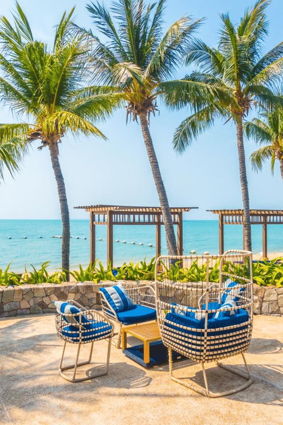 A palm beach garden with blue furnishings