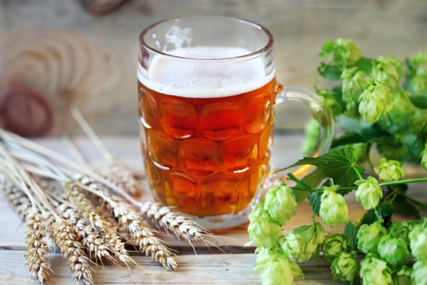 Barley and hops are beer's main ingredients